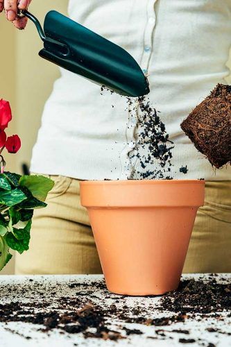 clay flower pot with torso of person in background spreading dirt with a green trowel part of a red plant to the left and dirt all over the countertop