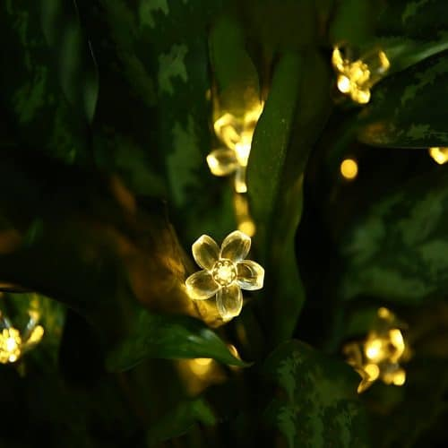 outdoor flower string lights shown within greenery at night