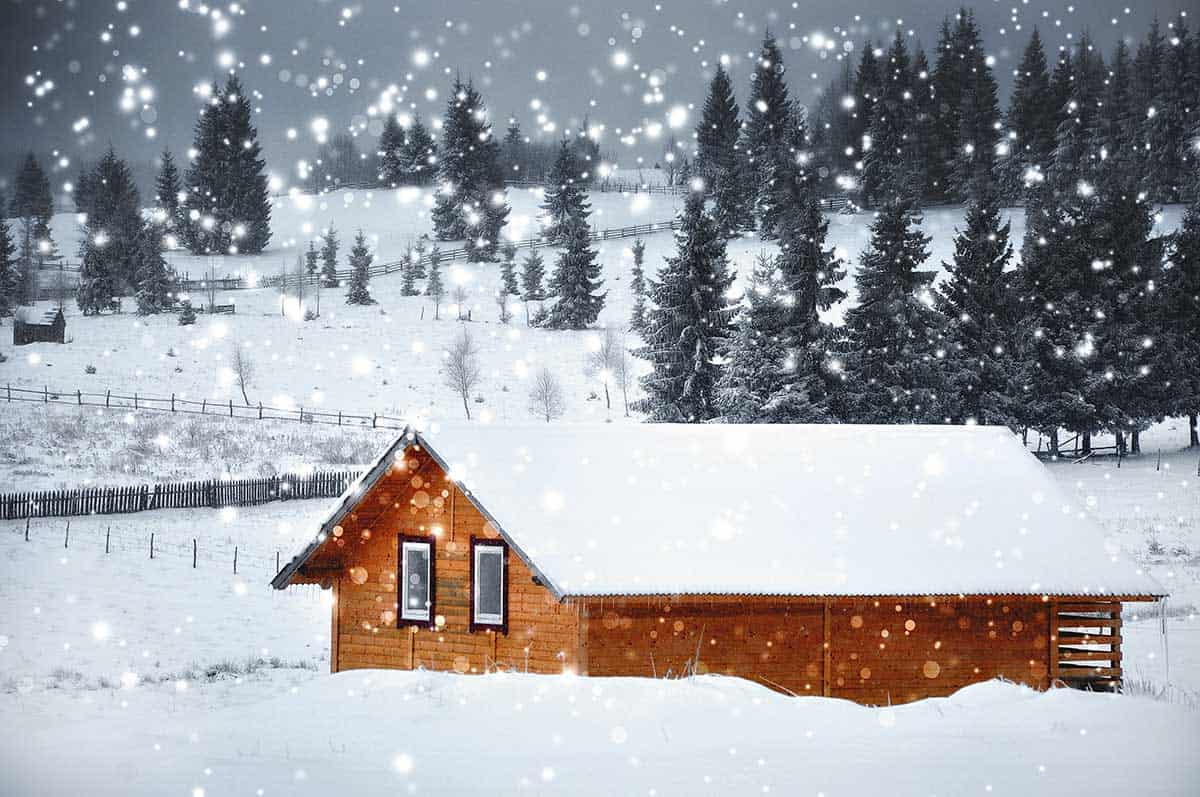 picture of cabin with snow on roof and snow falling fir trees in the background