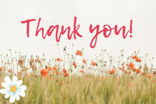 field of wildflowers with a large white daisy and the words thank you in pink script
